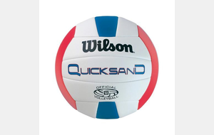 Ballon Beach volley Wilson Quicksand